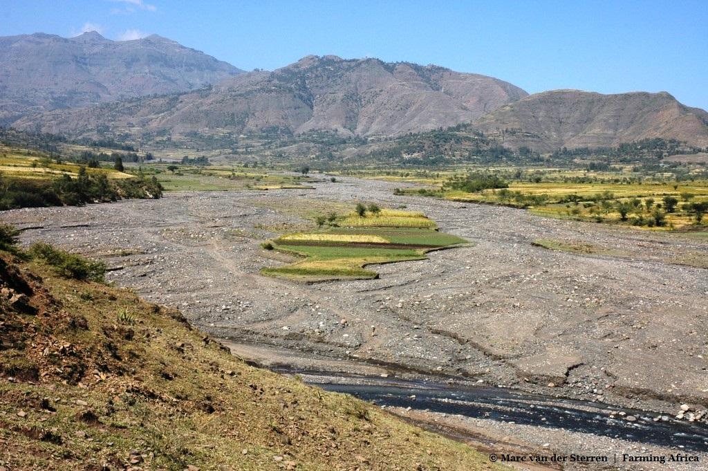 De droogte in Ethiopië die miljoenen levens in gevaar brengt moet van de overheid worden omschreven als 'voedselonzekerheid die wordt veroorzaakt door El Niño'.